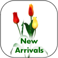 new-arrivals.png